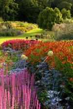 RHS Garden Harlow Carr |