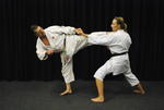 Alan Lewis | karate and self defence instructor