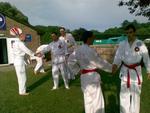 The I.B.F. school of martial arts |