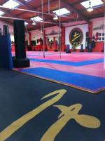 SD School of Martial Arts |