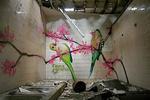 Fauna Graphic | Graffiti workshop leader