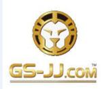 GS-JJ company |