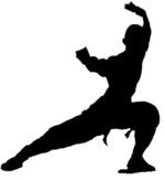 Vince Bloomfield | kung fu & Tai Chi Lessons instructor