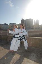 howard mayes | martial arts instructor