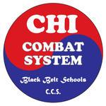 Chi Combat System | martial arts mentor