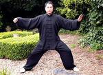 Yazi Liu | Tai Chi (Taijiquan) teacher