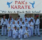 pak's karate palm caost |