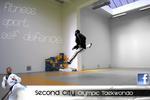 Second City Olympic Taekwondo |