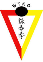 Mik Lane   Wing Tyun Kung Fu teacher