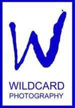 Wildcard Workshops |