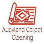 Auckland Carpet  Cleaning | Auckland Carpet Cleaning expert
