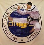 David Hodson | TaeKwon DO teacher