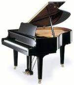 Daniel Walters   piano teacher