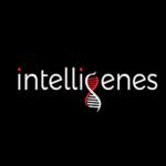 Intelligenes  Company | Intelligenes expert