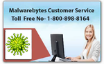 Anti Virus | Malwarebytes Customer Support Number trainer