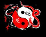 Dragon Snake Martial Arts | martial arts instructor