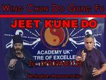 BIRMINGHAM WING CHUN DO  (JUN FAN) |