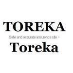 Toreka Verification  Site | Toreka expert