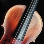 Jessica Diggins | Violin teacher