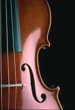 Frances Bredenkamp   Violin & Piano teacher