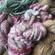 Fun and Funky Yarns