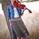 Katya Lazareva | Viola & Violin teacher