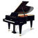 Adult Advanced Piano Lessons