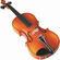Iveta Hlavenkova | Violin teacher