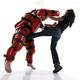 Martial Arts Tae Kwon Do Bytomic Guildford